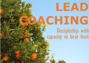 coaching - oranges
